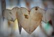 Le cœur d'un humain pompe 182 millions de litres de sang dans sa vie en moyenne
