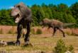 Dans l'histoire de la Terre, nous sommes plus proches du Tyrannosaure rex que le T. rex l'est du stégosaure