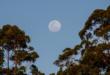 L'Australie est plus large que la lune